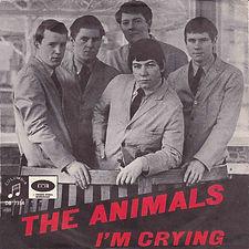 Animals I'm Crying Sweden