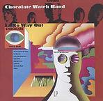 Chocolate Watch Band