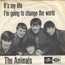 Animals It's My Life