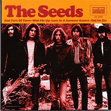 Seeds Bad Part Of Town EP USA