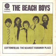 Beach Boys Cottonfields Sweden
