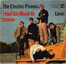 Electric Prunes I Had Too Much To Dream GER