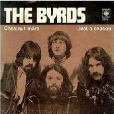 Byrds Chestnut Mare Norway