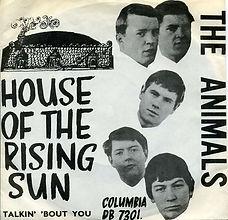 Animals Hous Of The Rising Sun Denmark