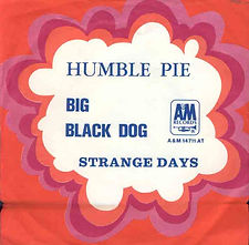 Humble Pie Big Black Dog Holland
