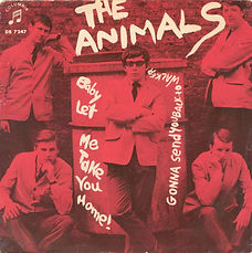 Animals Baby Let Me Take You Home Sweden