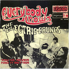 Electric Prunes Everybody Knows France
