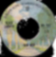 Iron Man / Electric Funeral Warner Bros 7530- 1971 - Palmtree label - side 1