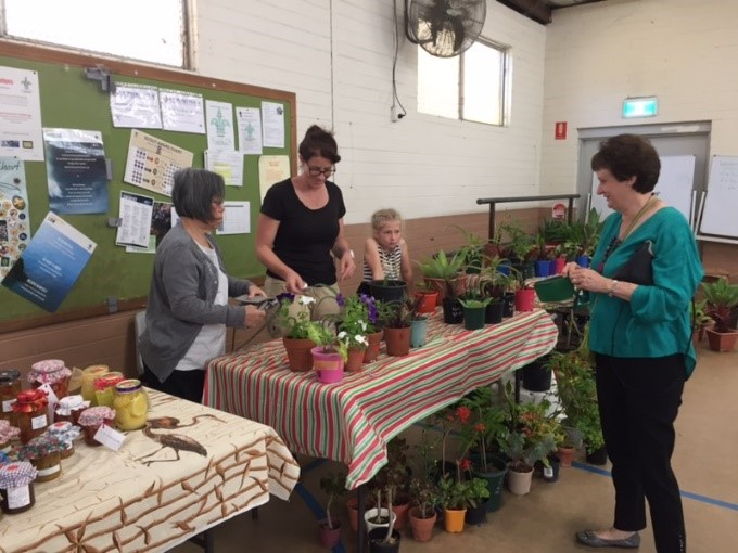 Plant stall at mini fete