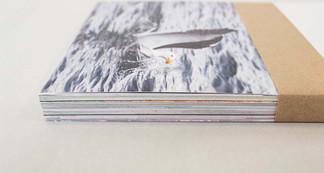 Dettaglio delle cartoline