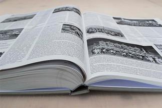 """Dettaglio del libro """"Blenio"""""""