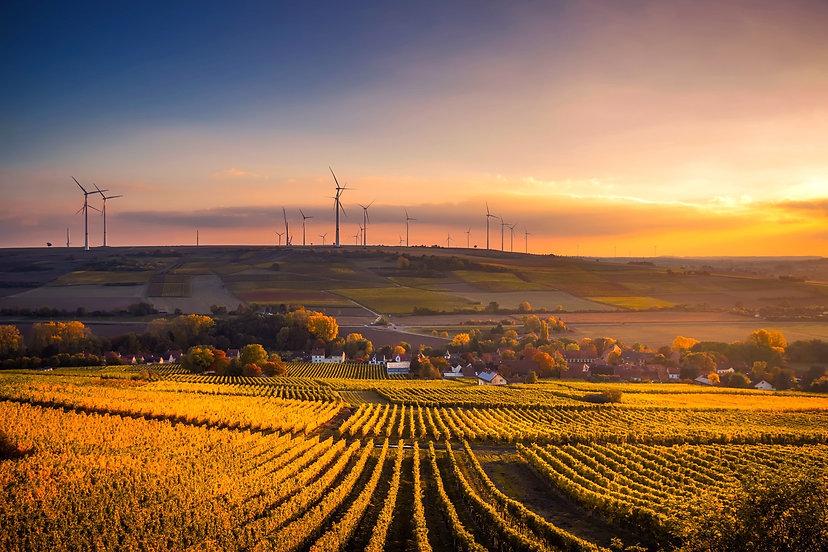 Naturskön utsikt över ett jordbruksfält vid solnedgång.