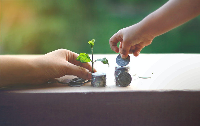 Två händer där den ena lägger silvermynt på hög och den andra håller fram en liten grön planta bland mynten.