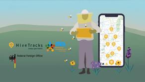 AI-Driven Climate-Smart Beekeeping for Ethiopian and Uzbek Women