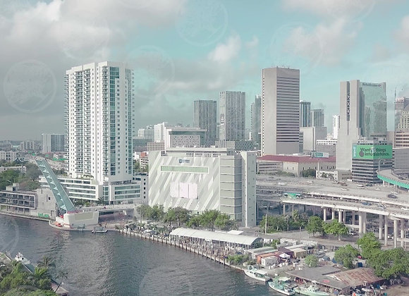 Downtown Miami by the River