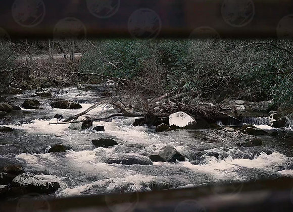 Creek by a Wooden Bridge
