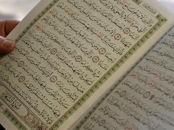 Islam darf nicht über deutschen Gesetzen stehen / Moscheen beweisen Unwillen zur Integration