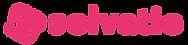 solvatio_2020_logo_300px.png
