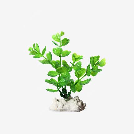 künstliche Pflanze.jpg