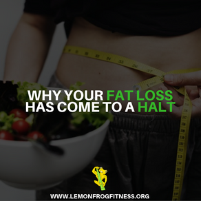 Why Fat Loss Comes To a Halt
