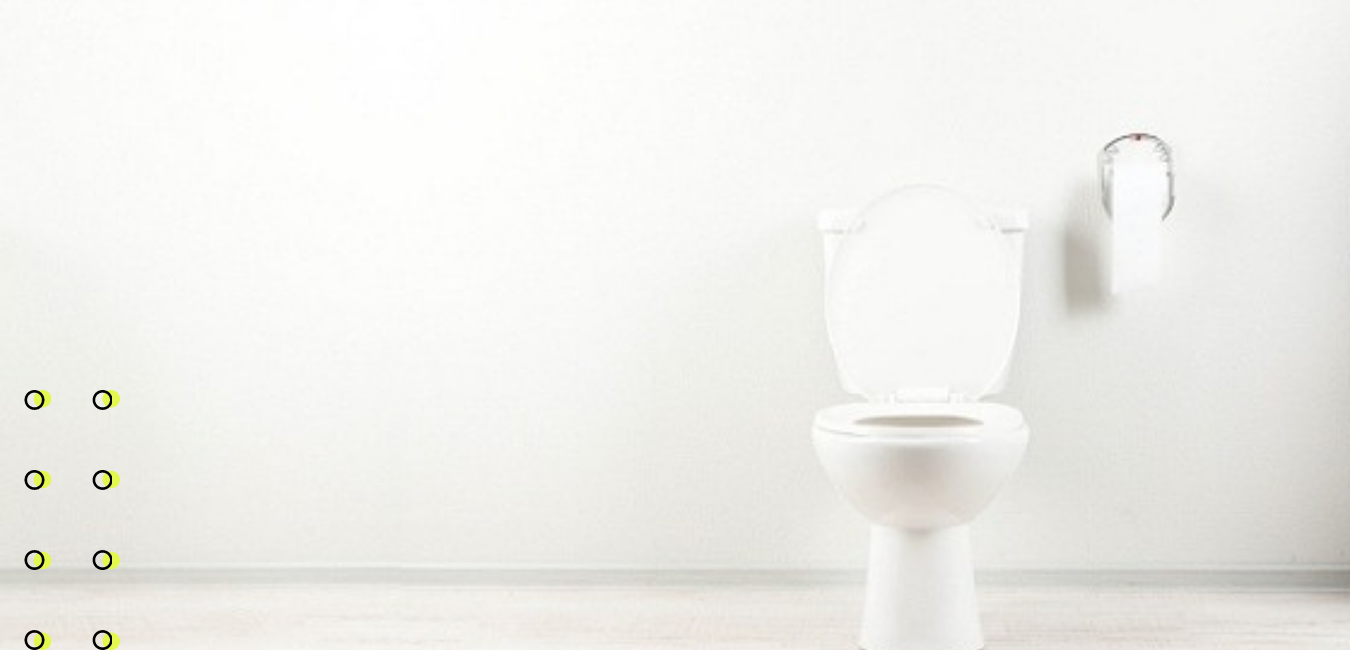 Home page toilet.png