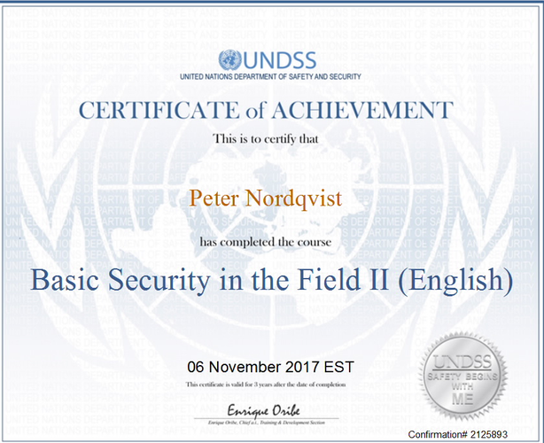 UNDSS Certificate of Achivement 1.png