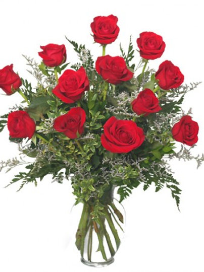 Roses - (price below reflects half dozen)