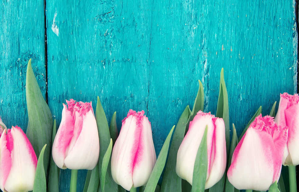 Frame%20of%20tulips%20on%20turquoise%20r