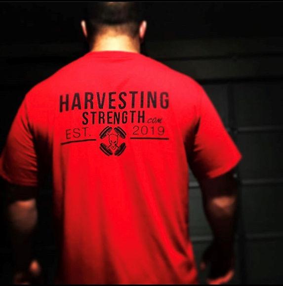harvest back.jpg