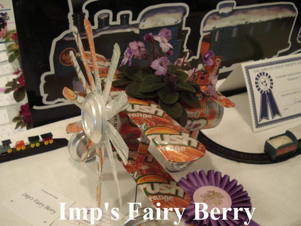 Imp's Fairy Berry Plane.JPG
