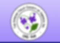 AVSA logo.PNG
