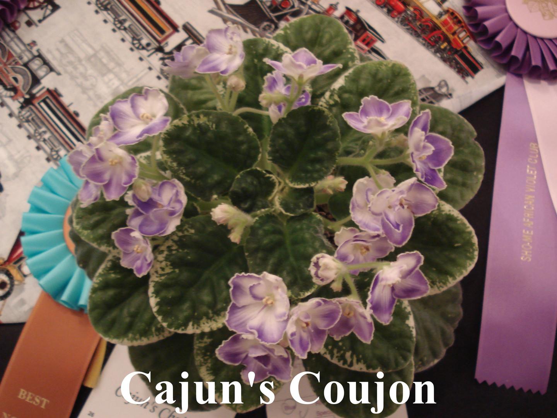 Cajun's Coujon.JPG