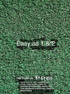 EASYAS123AD1.jpg