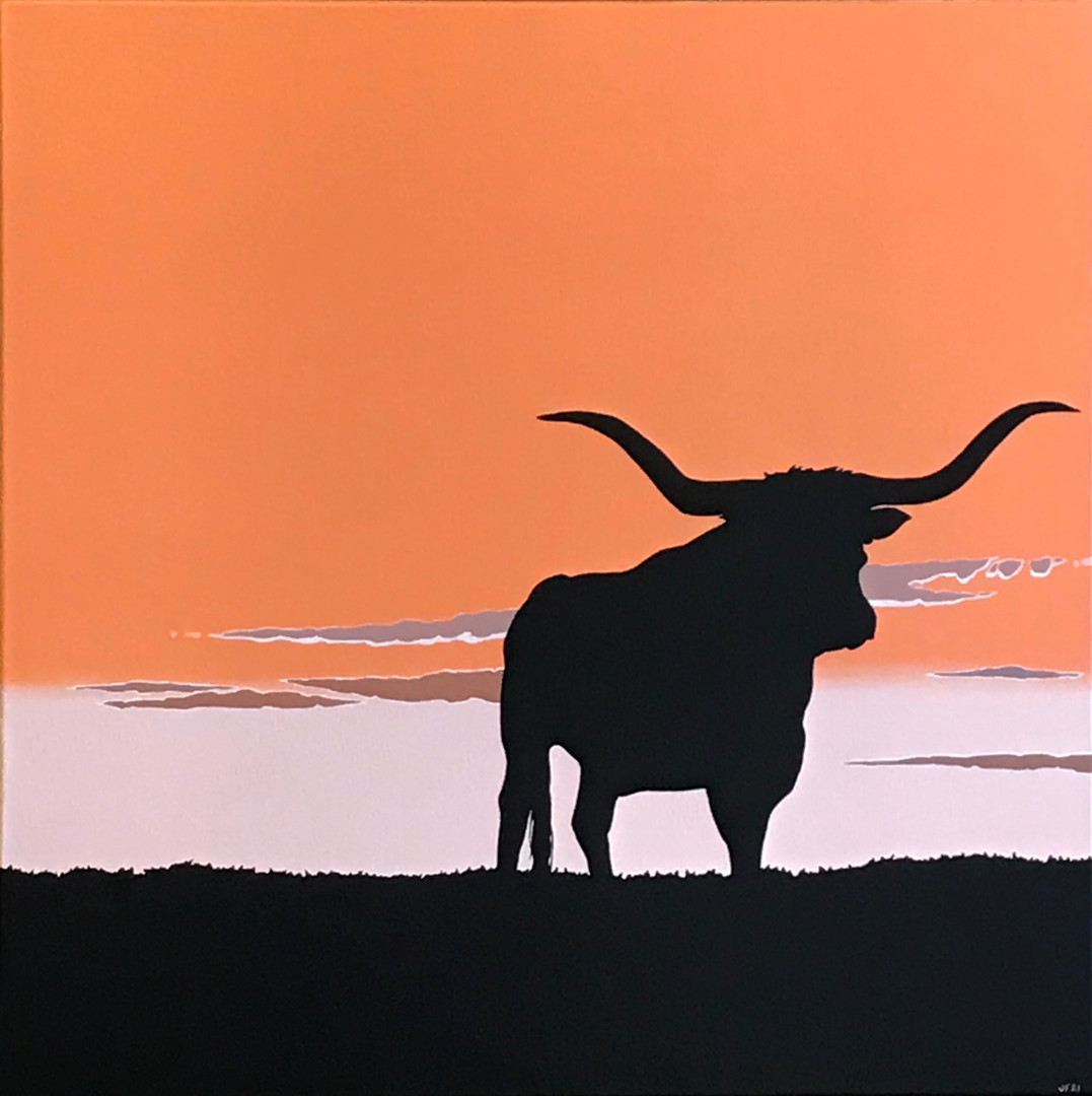 Sunset and a Longhorn