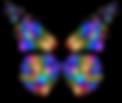 papillon 4.png