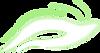 Antiopelle - Logo seul blanc.png