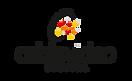 logo cvd.png