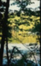 New Hampshire reflection_image.jpg