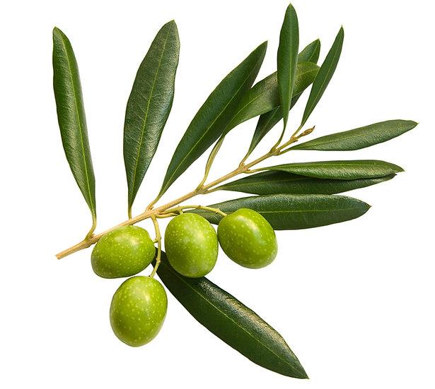 Huile végétale d'olive - biologique