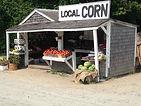 Log Cabin Farm.jpg