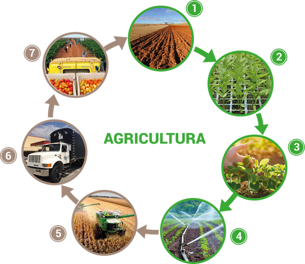 Agricultura web.png