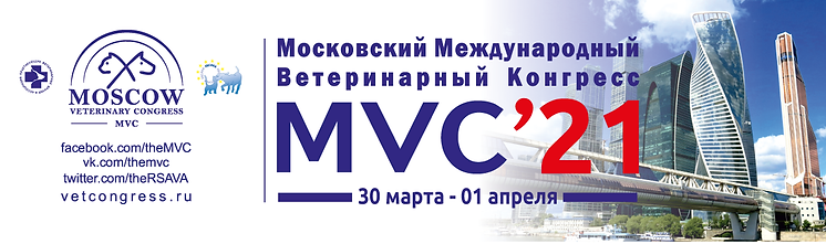 МВК2021.png