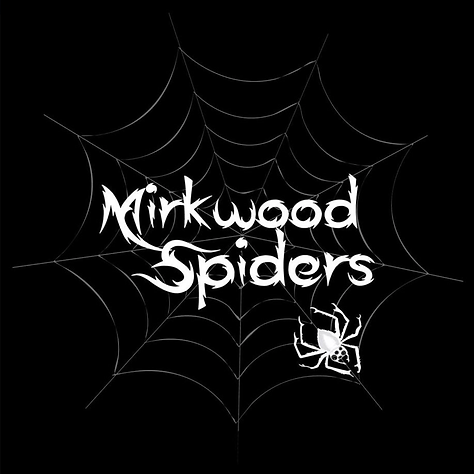 Mirkwood Spiders Cover