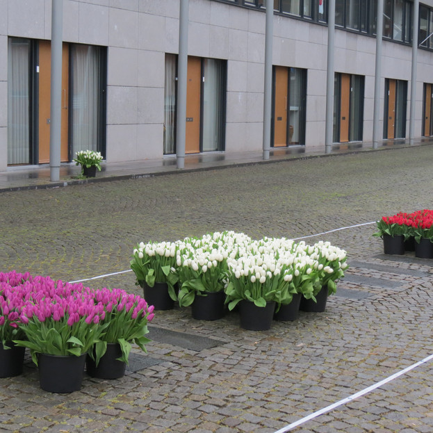 Monument Maastricht