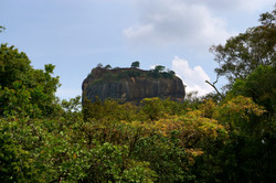 Lion Rock- Sigiriya, Sri Lanka