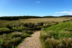 Horton National Plains