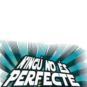 Ningu no és perfecte