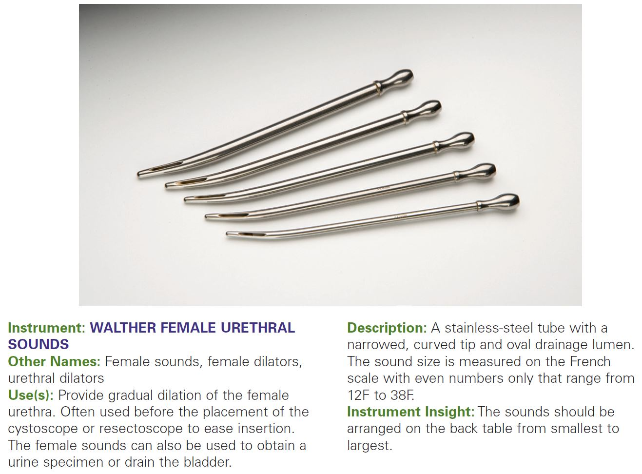 WALTHER FEMALE URETHRAL SOUNDS