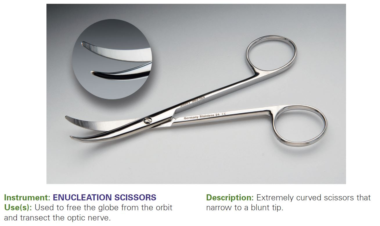 ENUCLEATION SCISSORS