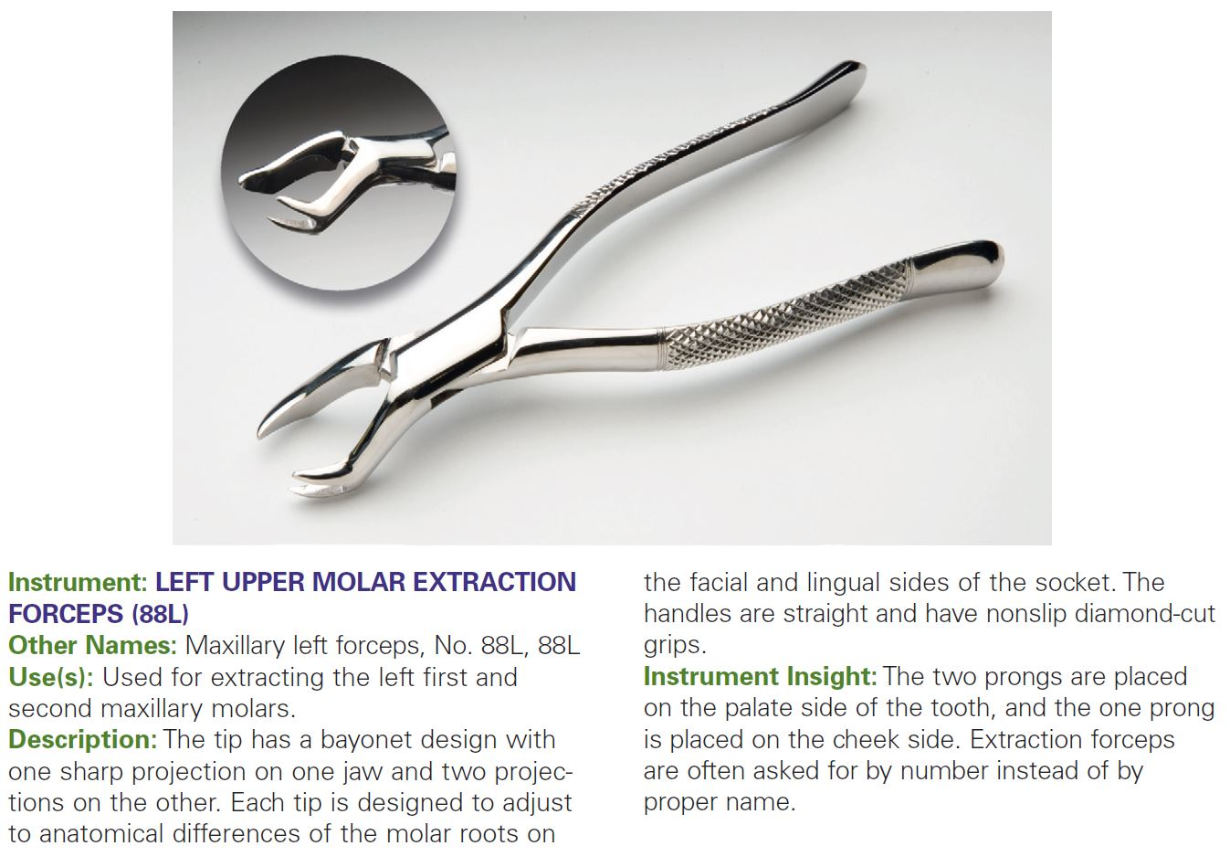 LEFT UPPER MOLAR EXTRACTION FORCEPS